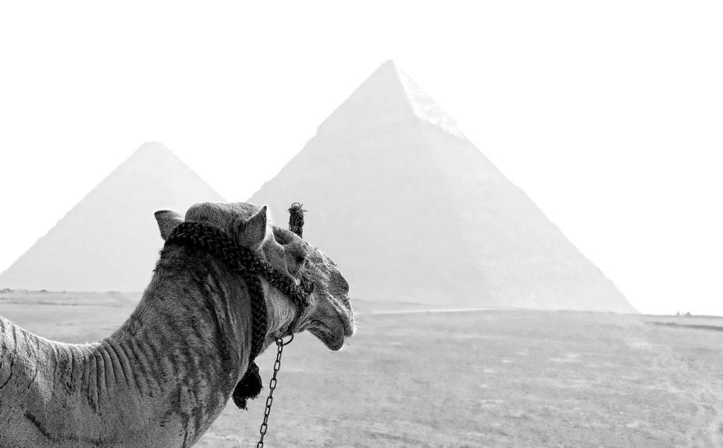 ricardo gomez angel VCyqzOM2o1Y unsplash 1024x635 - Почему египетские пирамиды считаются чудом света?