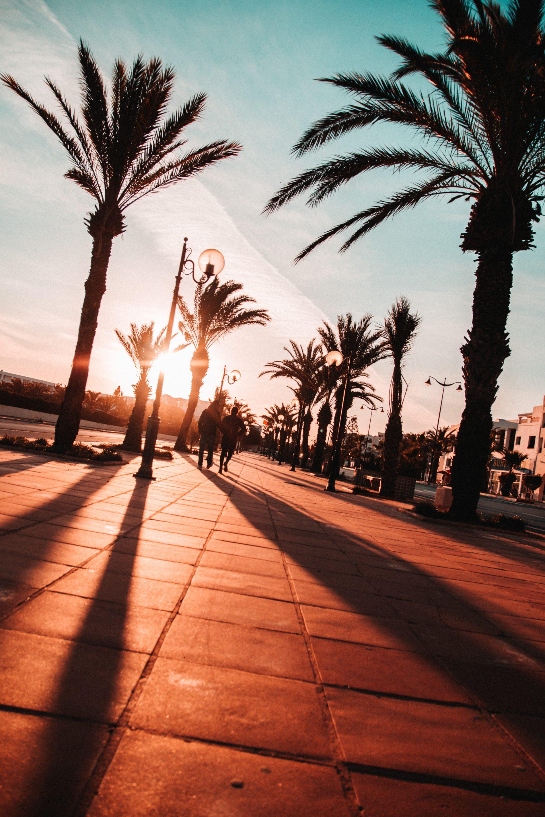 adrian dascal lVZ46hihCi0 unsplash 1900x2850 - Летим в Тунис - лайфхаки для путешествия