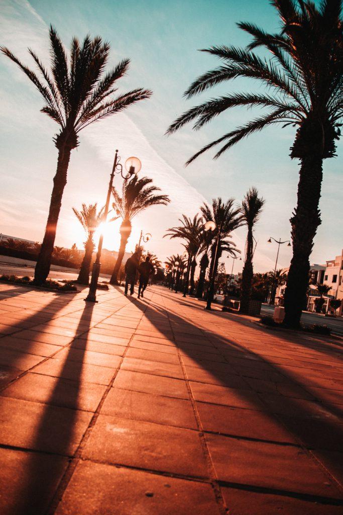 adrian dascal lVZ46hihCi0 unsplash 683x1024 - Летим в Тунис - лайфхаки для путешествия
