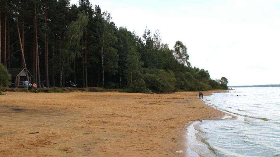 пляж отдых в беларуси