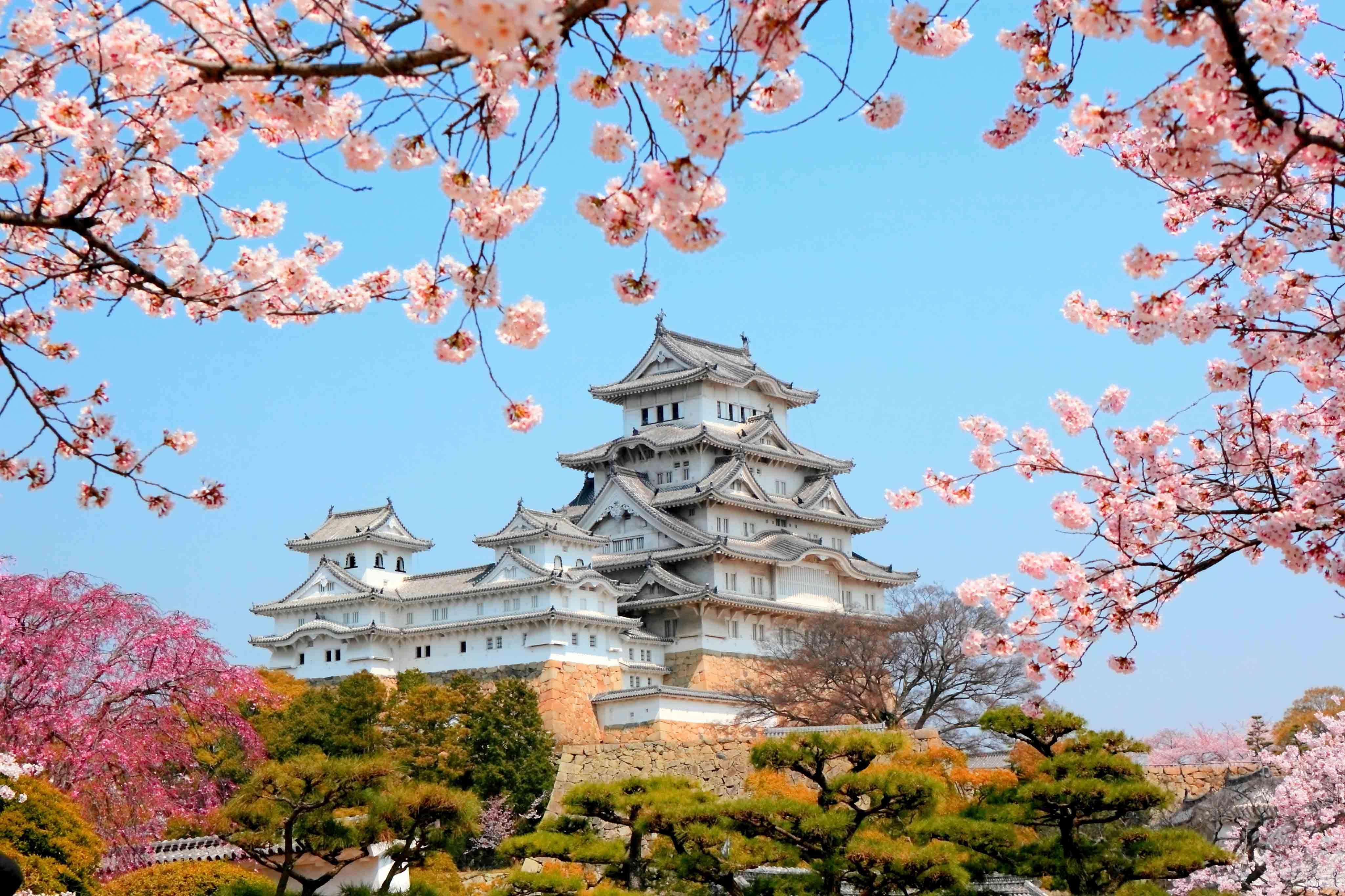 Image result for япония